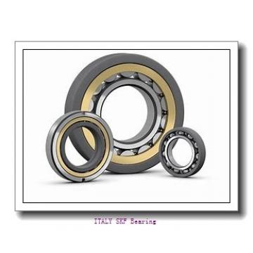 SKF  6006-2RS1 ITALY Bearing 30×55×13
