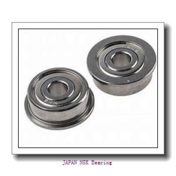 NSK FC6890250 PSSI JAPAN Bearing 12*18*26