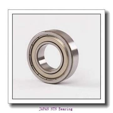 120 mm x 215 mm x 40 mm  NTN NJ224E JAPAN Bearing 75*160*55
