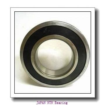 NTN FLW 606Z/ZZ JAPAN Bearing 6*13*5
